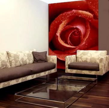 Fotomural Rose