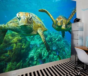 Fotomural Tortugas