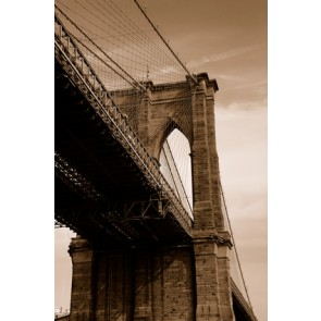 Fotomural Brooklyn Sepia
