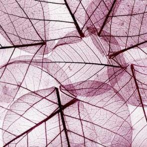 Fotomural Hoja Purpura