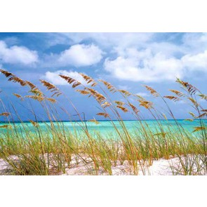 Fotomural Ocean Breeze