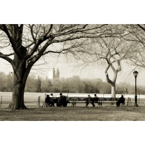 Fotomural Recuerdos de Central Park