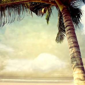Fotomural palmera vintage