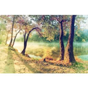 Fotomural bosque vintage
