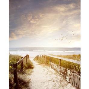 Fotomural camino a la playa