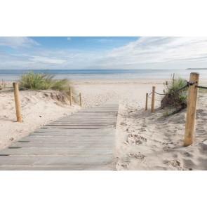 Fotomural Paseo por la playa