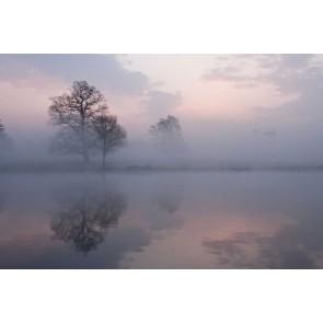 Fotomural niebla en el lago