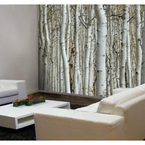 Fotomural troncos blancos