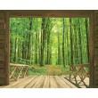 Ventana al bosque verde