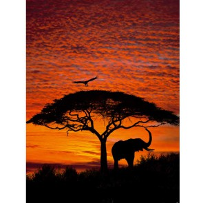Fotomural African Sunset